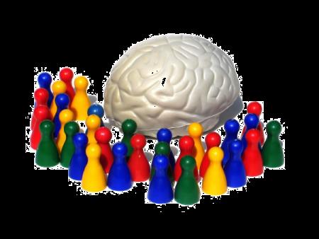 Analyse 2014 – 03/15. Neurosciences et éducation : Déconstruire les mythes