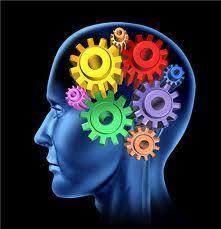 Analyse 2014 – 12 / 15. L'apport des neurosciences dans l'enseignement